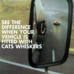 Cats-Whiskers-right